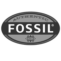 Logo fossil 250px
